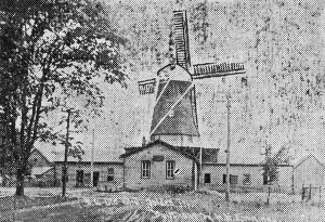 Golden Windmill (Emminga)